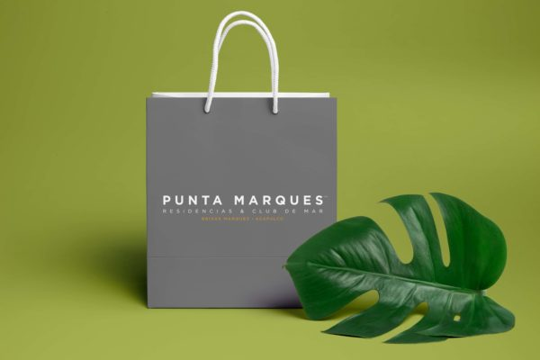 Shopping Bag PSD MockUp 2